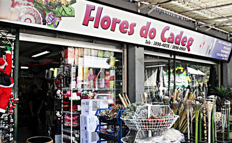 Flores_do_cadeg_artificiais_